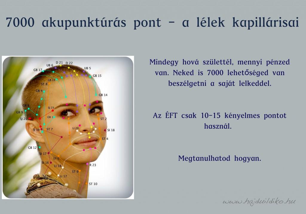 7000 akupunkturás pont