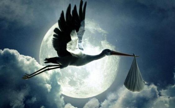 A gyereket a gólya hozza. A gólya - mint egy nagy szárnyas angyali lény ideája - hozza le a Földre a lelket.